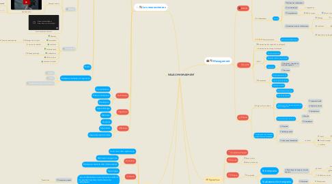 Mind Map: NEUROMANAGEMENT