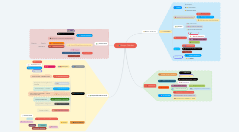 Mind Map: Riesgos Globales