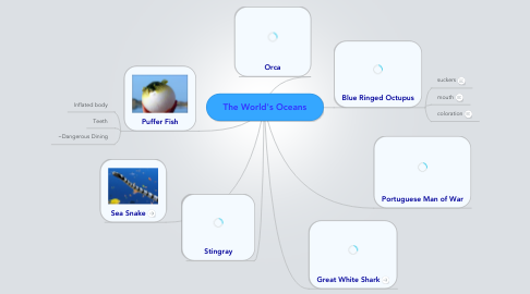 Mind Map: The World's Oceans