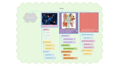 Mind Map: Morfofisiologia II