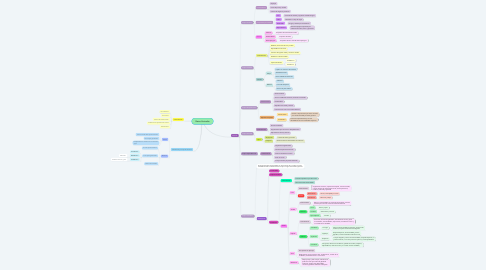 Mind Map: Reino Animalia