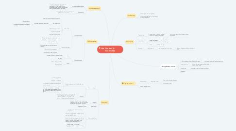 Mind Map: Het Gouden Ei:             Tim Krabbé
