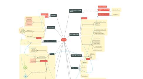 Mind Map: Taninos