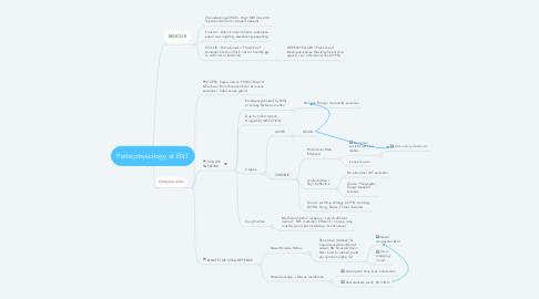 Mind Map: Pathophysiology of ENT