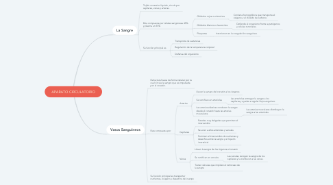Mind Map: APARATO CIRCULATORIO