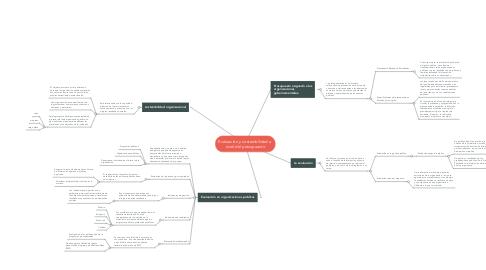 Mind Map: Evaluación y sostenibilidad a  nivel del presupuesto