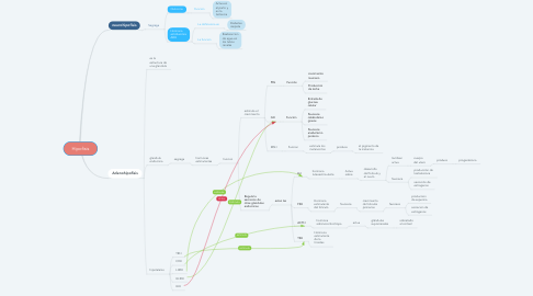 Mind Map: Hipofisis