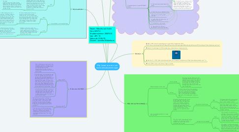 Mind Map: Mijn keuze voor een van beide afstudeerrichtingen