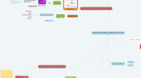 Mind Map: PRINCIPALES MECANISMOS DE REPARACIÓN EN EL ADN