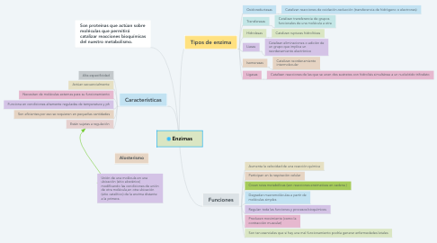 Mind Map: Enzimas