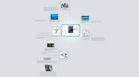Mind Map: Whaling. Should it stop? Or should it have been stopped long ago??