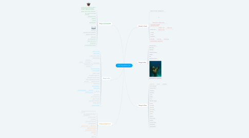 Mind Map: 100 Things Before I Die