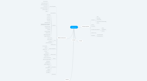 Mind Map: Derpa.com