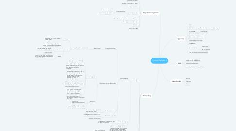 Mind Map: Cancer/Palliation