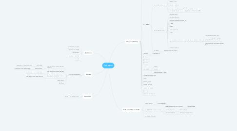 Mind Map: Сценарии