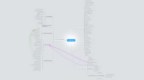 Mind Map: VÕRGUSTIKUD