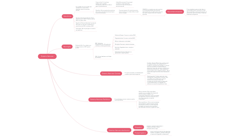 Mind Map: Sistema Nervoso