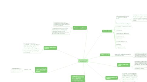 Mind Map: Desarrollo psicologico del adolescente