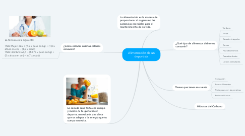 Mind Map: Alimentación de un deportista