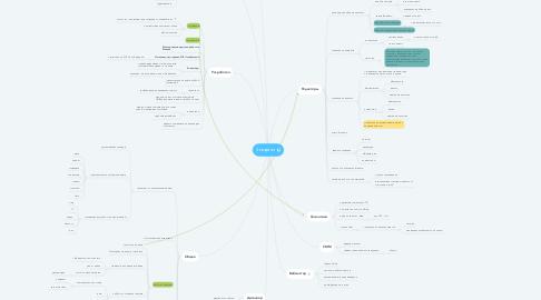 Mind Map: 3 квартал