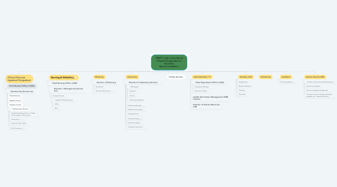 Mind Map: DRAFT Light of the World Hospital Organizational Heirarchy Recommendations