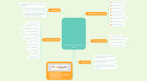Mind Map: 30-Minute Therapy For Anger