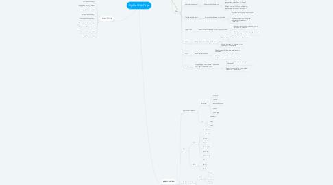 Mind Map: Dyrkla Web Page