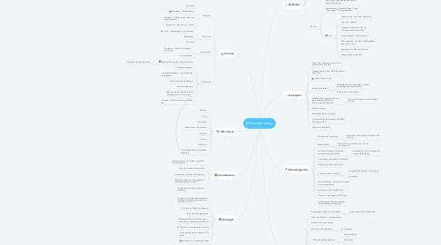 Mind Map: Mensverbetering