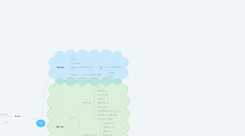 Mind Map: C&T