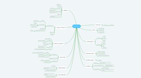 Mind Map: Besættelsen