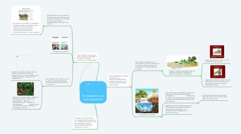 Mind Map: El ecosistema y su autorregulación