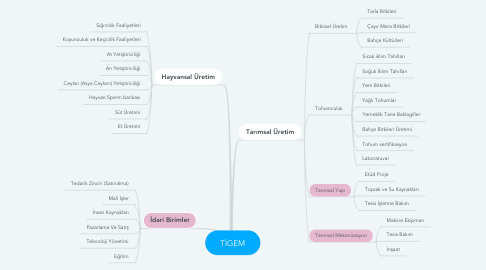 Mind Map: TİGEM