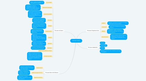 Mind Map: ISO/IEC12207