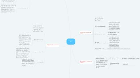 Mind Map: Decisiones  de  comunicación
