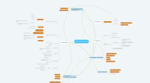 Mind Map: Frauen in der Informatik