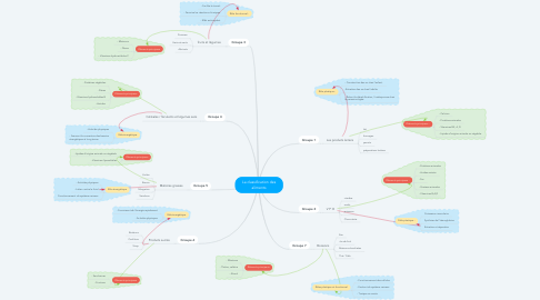 Mind Map: La classification des aliments