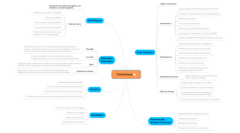 Mind Map: Fotosíntesis