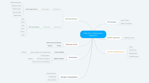 Mind Map: Cells: From Molecules to Organisms