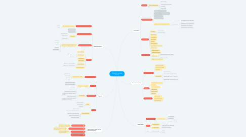 Mind Map: Mathedid - wichtige Themen