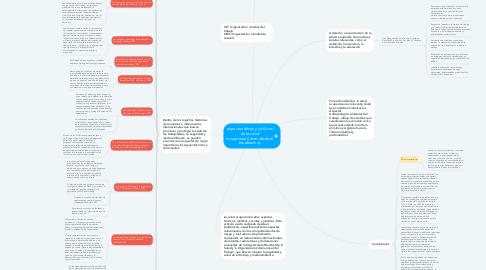 Mind Map: aspectos éticos y jurídicos de la salud ocupacional.(visto desde el bioderecho).