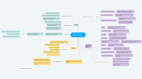 Mind Map: NATURALEZA DE LA  MISIÓN Y LA VISIÓN
