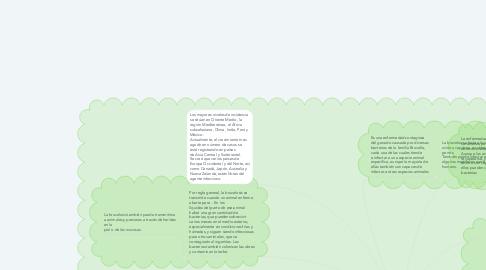 Mind Map: BRUCELOSIS