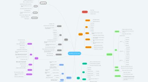 Mind Map: Modelos de Processo