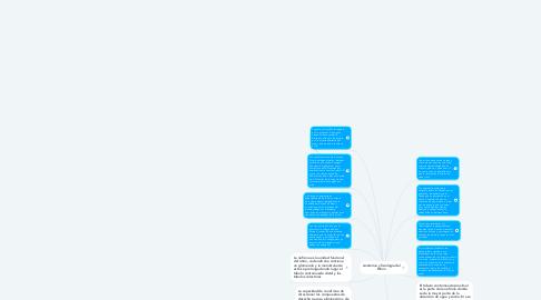 Mind Map: Anatomía y fisiología del Riñon