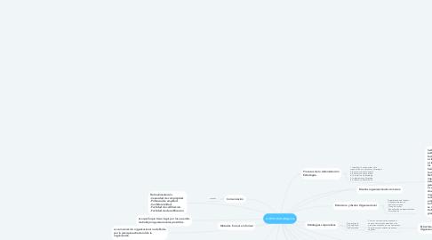 Mind Map: admin estrategica