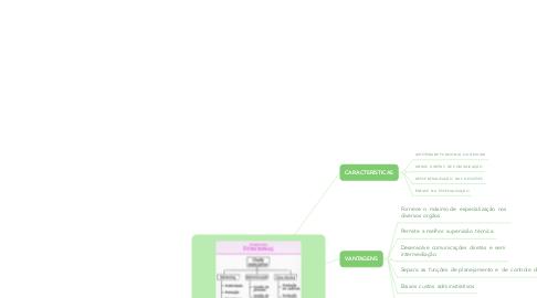 Mind Map: ESTRUTURA ORGANIZACIONAL (4)  ORGANIZACIONAL FUNCIONAL