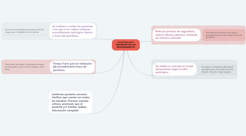 Mind Map: Acción Esencial 4 SEGURIDAD EN LOS PROCEDIMIENTOS