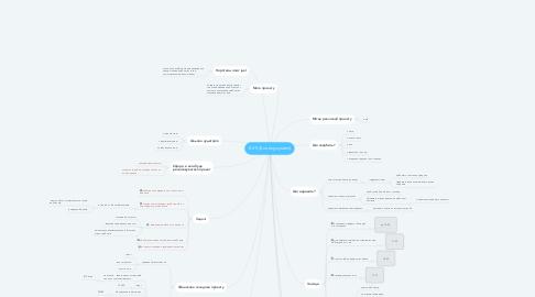 Mind Map: E-VS (E-voting system)