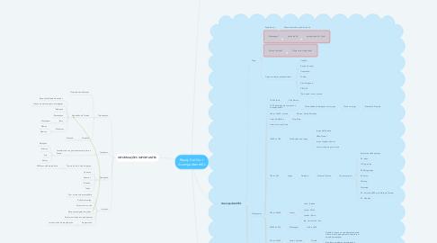 Mind Map: Ready Set Go + AcampadrentrIEL