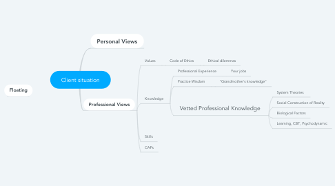 Mind Map: Client situation
